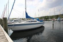 Salg af brugt båd, brugt båd, bådmægler, Sunwind 31